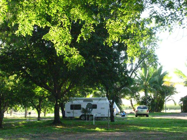 Shady powered sites for caravans 