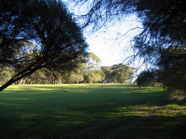 Belair National Park Caravan Park - Belair Adelaide South Australia: The