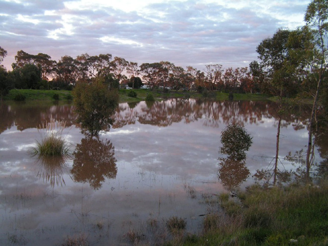 Railway Dam and Donald Caravan Park - Photo by Rob Hornsby