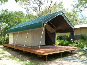 Safari Palm Tent