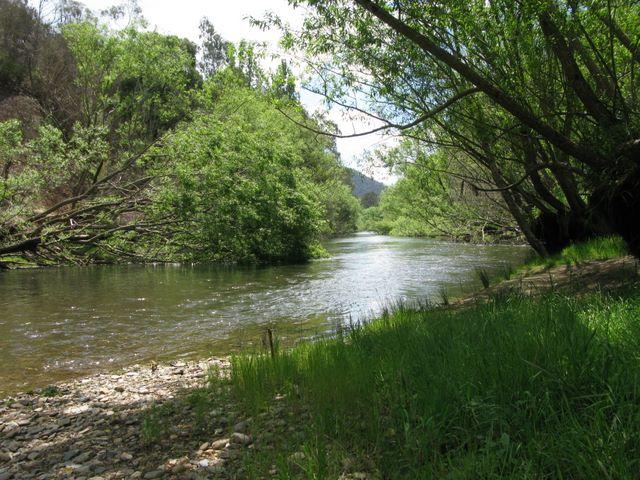 """Résultat de recherche d'images pour """"mitta river"""""""