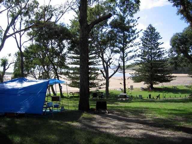 Moonee Beach Holiday Park  Moonee Beach Camping Area Near Moonee Creek