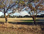 Auburn Showground Caravan Park - Clare Valley: The park is located in a beautiful rural setting.