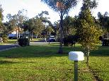 Happy Hallidays Holiday Park - Hallidays Point: Powered sites for caravans
