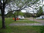 Pinaroo Leisure Park - Muswellbrook: Powered sites for caravans