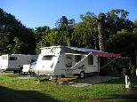 Newmarket Gardens Caravan Park - Ashgrove Brisbane: Powered sites for caravans