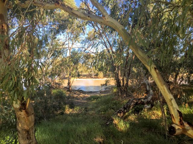Urana Caravan Park & Aquatic Centre - Urana Lake views are ...